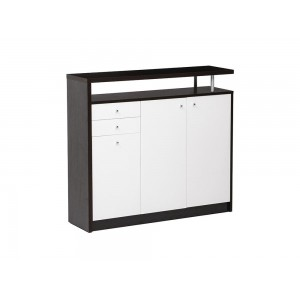 Shoe Case/Cabinet with Elevated Shelf