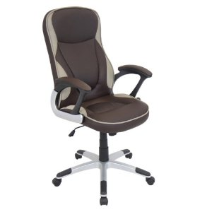Two-Toned Executive Office Chair